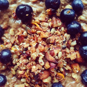 A close up of a bowl of Primal Protein Porridge topped with a grainfree granola and blueberries.
